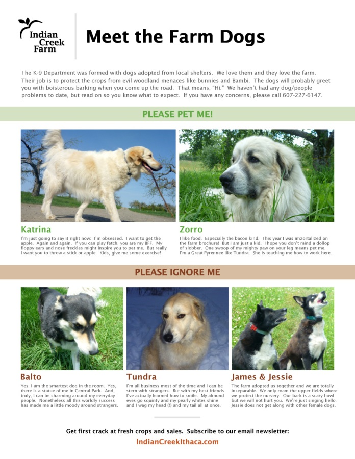 Indian Creek Dog Guide | Indian Creek Farm