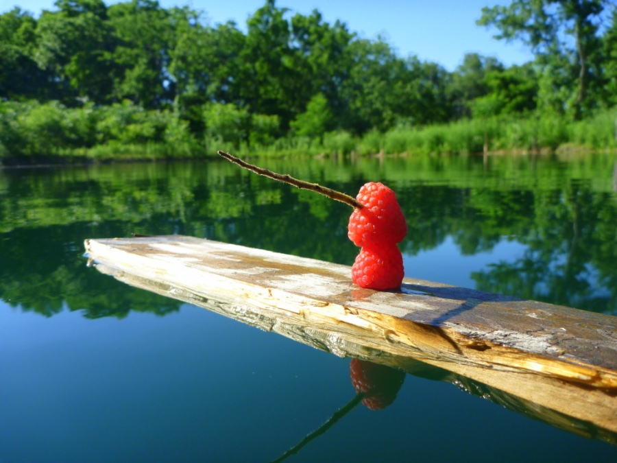 Fisherberry.