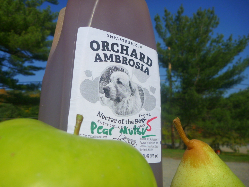 Pear Sale, Extended Apple Sale, and November Farm Hours