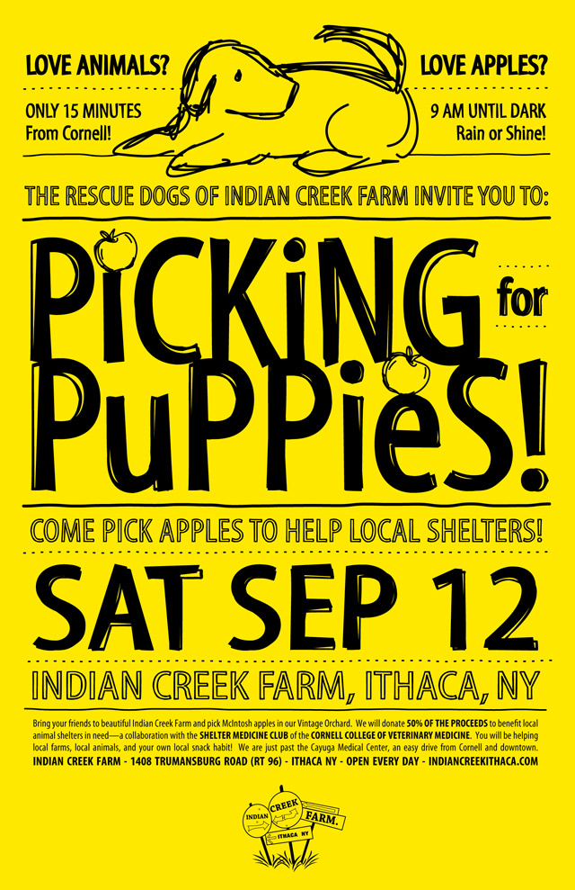 Picking-for-Puppies---yellow
