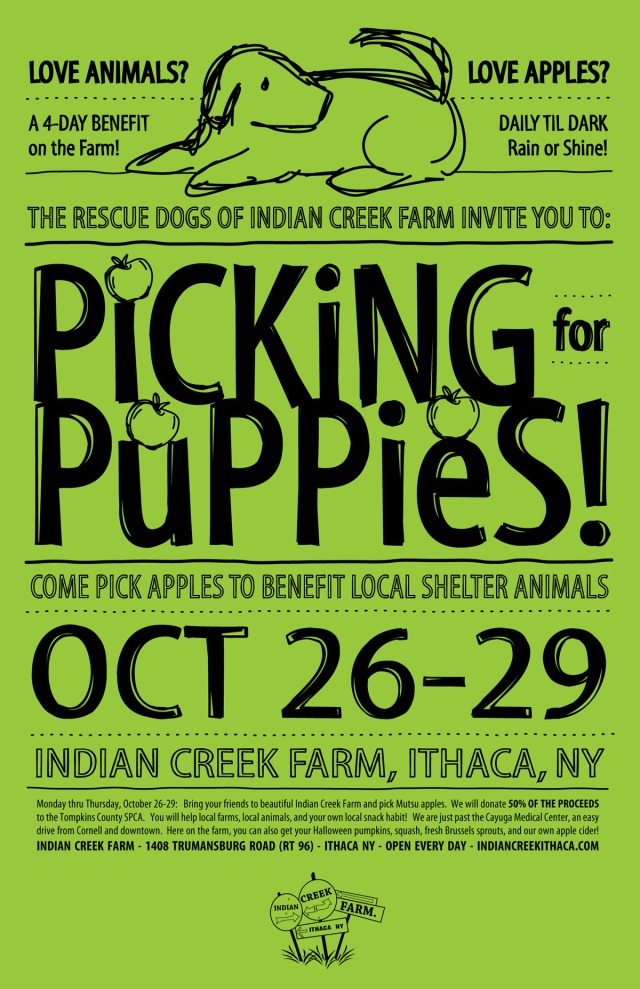 Picking-for-Puppies-Part-2